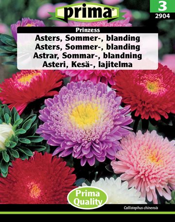 Asters, Sommer-, blanding Prinzess